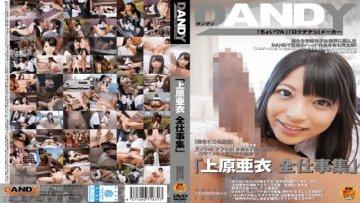 dandy-422-ai-uehara-total-work-collection_1491575245